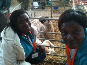 Esther & Mary visit the lambing shed at Hadlow College
